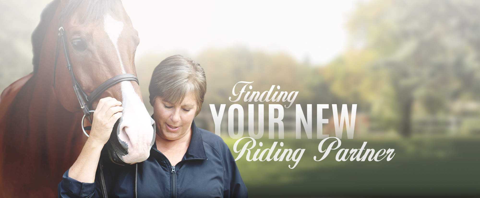 Finding your new riding partner at Galway Farm Long Grove, Illinois